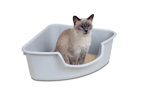 Pioneer Pet 三角形墙角猫砂盆