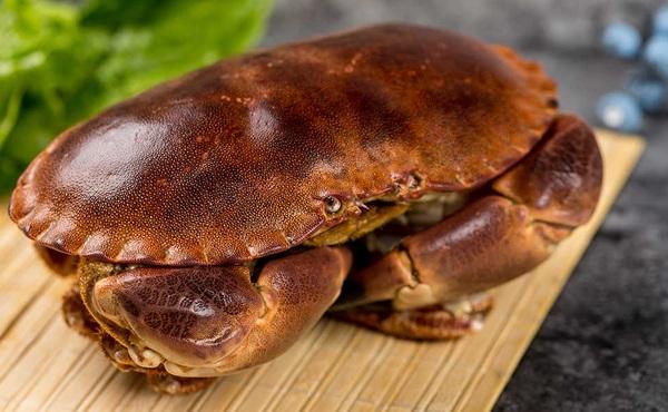 英国面包蟹(650-750g)