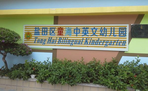 深圳市盐田区童海中英文幼儿园