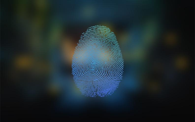 2019年4月5000元以上后置指纹识别手机排行榜