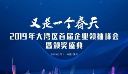 又是一个春天-2019大湾区首届企业领袖峰会暨颁奖盛典