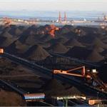 保价难救煤炭市场 调控思路必须转变