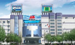 吉林敖东工业园规划案例