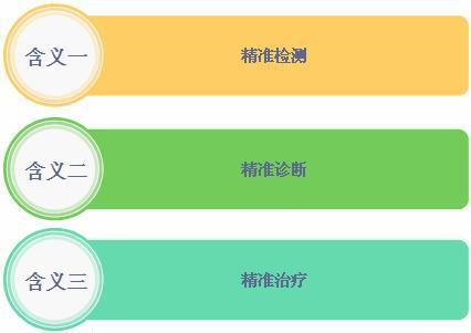 图表1:中国精准医疗行业特征简图
