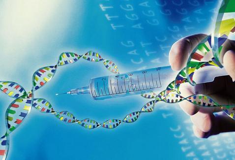 转基因食品暂难行 基因测序时代先至_研究报告 - 前瞻产业研究院