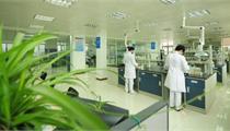 新型制剂项目可行性研究案例