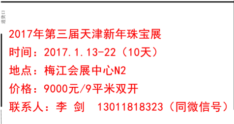 2017第三届天津梅江新年购物节