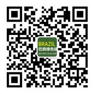 2017年巴西国际绿色建材博览会