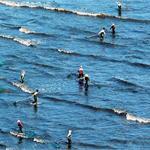 """""""互联网+""""与渔业融合 水产养殖激发新活力"""