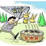 中国互联网彩票发展特点与趋势