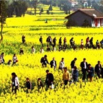 《全国休闲农业与乡村旅游示范县、示范点创建的通知》
