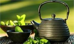茶文化渐起,茶具行业发展前景看好