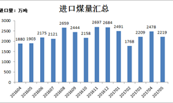 5月<em>煤炭</em>进口环比下降 同比保持不断增长趋势