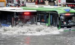 """每逢暴雨必""""看海""""  海绵城市建设步伐加快"""
