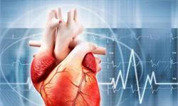 世界首个3D打印柔性心脏诞生 医疗3D打印市场再下一城