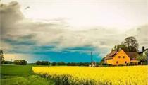 田园综合体价值体现及发展前景 | 解析