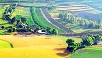 《关于深入推进农业供给侧结构性改革加快培育农业农村发展新动能的若干意见》