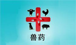 传统畜牧业向现代化转变 带动<em>兽药</em>市场迈向新台阶
