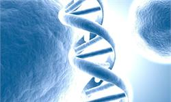 无创产前基因测序方兴未艾 高龄高危产妇需求旺盛