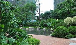 城市绿化工作重视程度提高 园林绿化行业蓬勃发展