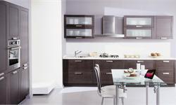 厨房经济前景诱人 厨房电器蕴藏千亿市场