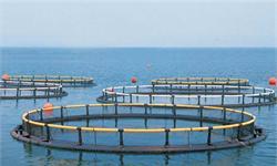 生产水平相对落后 水产养殖行业还有巨大提升空间