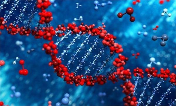 基因治疗行业