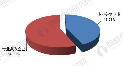 中国美容美发行业企业规模格局情况(单位:%)