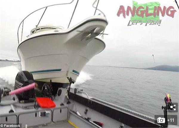 驾船钓鱼被撞翻