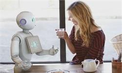 2018年家用<em>服务</em><em>机器人</em>市场规模及发展趋势分析
