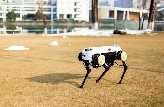 浙大发四足机器人