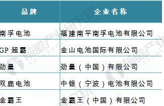 图表4:2016年中国市场主要干电池/充电电池品牌简介