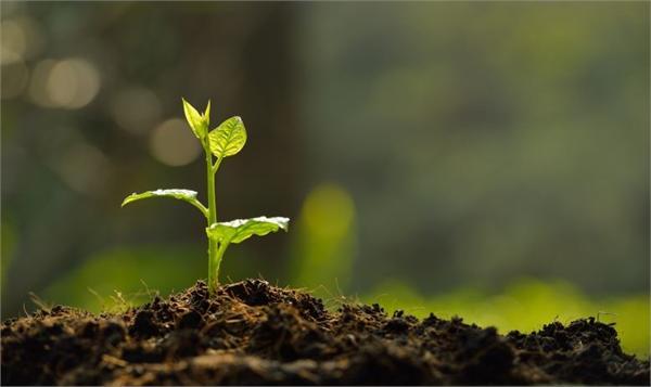 土壤修复行业