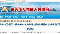 重庆市万州区特色小镇政策