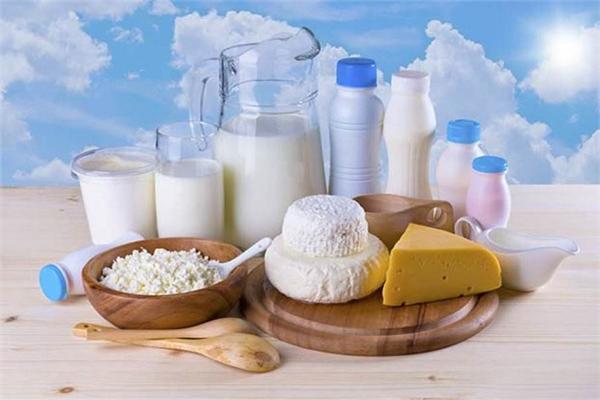 乳制品行业
