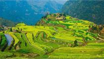 乡村旅游项目如何摆脱同质化?