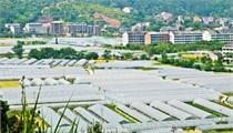 农业部财政部《关于开展国家现代农业产业园创建工作的通知》