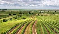 2017年国家农业扶持政策一览表
