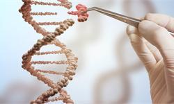 高盛:中国领跑CRISPR和CAR-T研究 研究测试投入拔得头筹