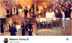打破传统!特朗普国宴欢迎马克龙夫妇 记者一个没请库克意外受邀