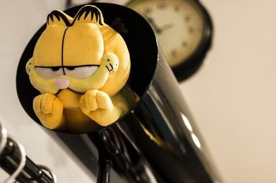 Garfield by fun