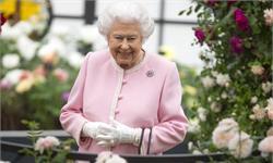 一派清新!英女王参观花展 一身粉色置身花丛嫣然出镜