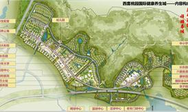 恒大西翥桃园国际健康养生城规划案例