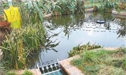农村污水处理政策密集落地 千亿市场空间或加速释放