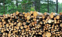 埃森哲:88%林业产品公司高管称将增加数字投资 大数据最受欢迎