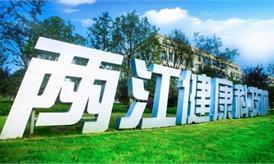 重庆两江健康科技城规划案例
