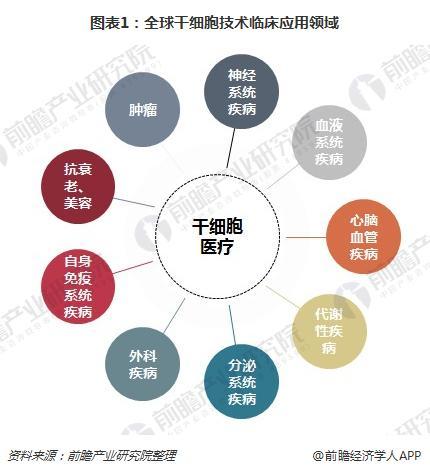 图表1:全球干细胞技术临床应用领域