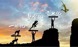 陈春花:打造营销团队的三个基本要求