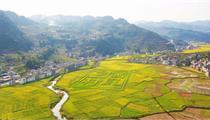 泸州发布经济成绩单 展示未来产业发展蓝图