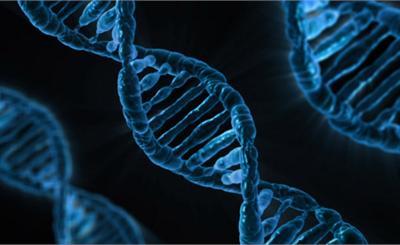 研究称CRISPR基因编辑或致癌
